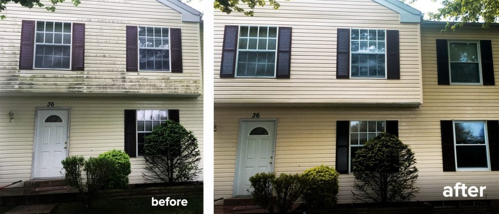 Vinyl siding soft washed: cleaned and no damage